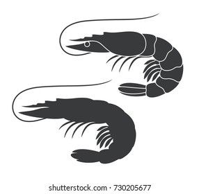 Shrimp silhouette. Isolated shrimp on white background. Prawns