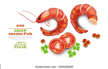 Shrimps isolated on white Vector realistic. 3d detailed illustration. Organic shop templates