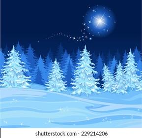 Shutting star over a fir tree forest