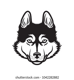 Siberian husky dog - isolated vector illustration