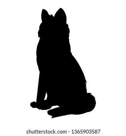 Siberian Husky or Laika Dog silhouette. Domestic animal or pet