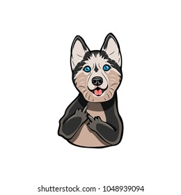 Siberian Husky with middle finger. Dog breed. Gesture. Vector illustration isolated on white background.