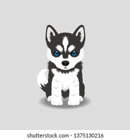 Siberian Husky Puppy Vector Illustration. Dog isolated