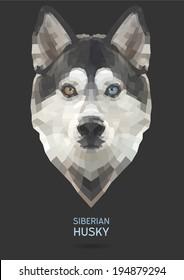 Siberian Husky vector polygon geometric