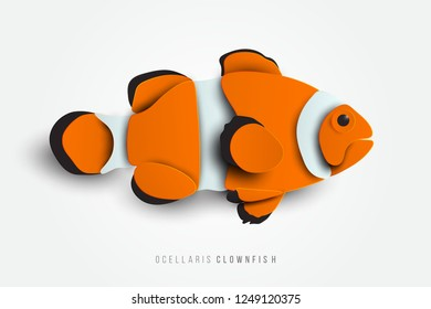 Side view of Ocellaris Clownfish in paper cut style. Exotic fish isolated on white background. Sea animals vector illustration