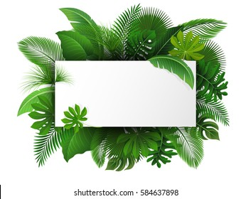 Sign with text space of Tropical Leaves. Suitable for nature concept, vacation, and summer holiday. Vector Illustration