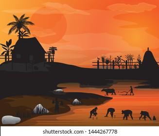 silhouett farmer transplant rice seeding in paddy field,sunligth in the morning with roster on picket,vegetable around hut vector design