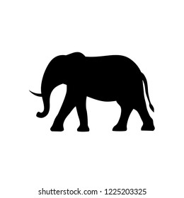 Silhouette African Elephant