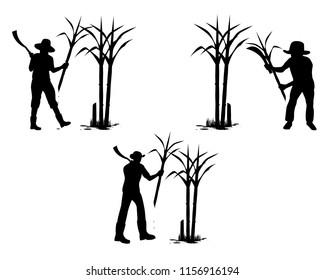 silhouette agriculturist shape cut sugar cane vector design
