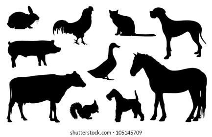 Silhouette animal