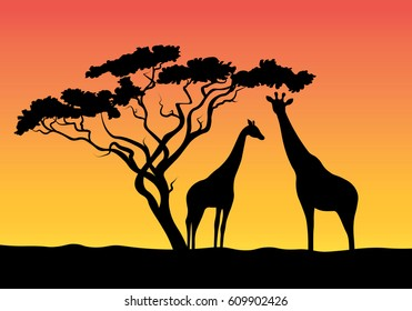 Silhouette of an animal