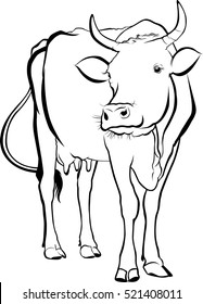 silhouette of an animal cow isolated on a white background