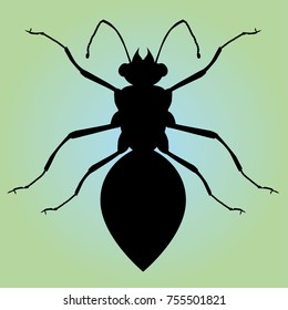 A silhouette of an ant