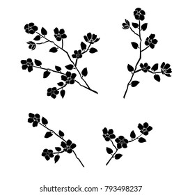 Silhouette of apple or cherry flower with leaf, branch  blossom,  black color, isolated on white background