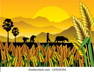 Silhouette of Asian farmers working at rice field, vector