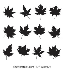 Silhouette of autumn leaves icon set isolated on white background.