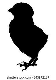 silhouette of baby chick