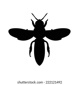 Silhouette of a bee