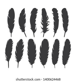 silhouette of bird feather collection. Pen feather icon simple style. detailed majestic feather collection