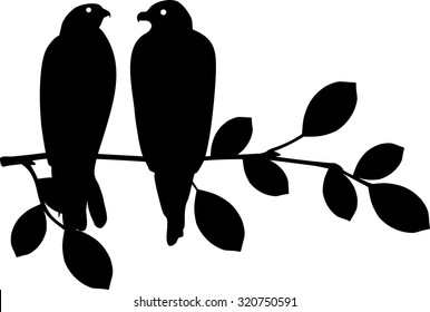 silhouette of bird sitting on branch