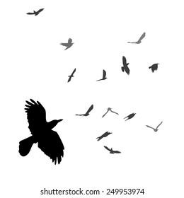silhouette of the bird. Vector
