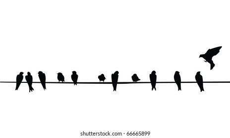 A silhouette of birds (Purple Martins) on a telephone wire.