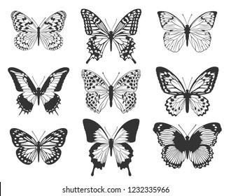 Silhouette of black butterflies. A set of butterflies.