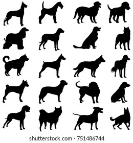 silhouette of a black dog on a light background