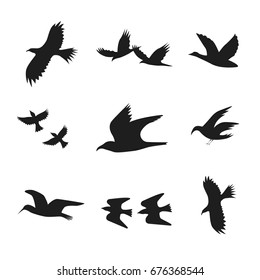 Silhouette Black Fly or Move Birds Set Decoration Element Nature Style. Vector illustration