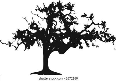Silhouette of a black oak tree on white