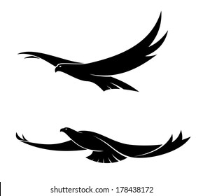 Silhouette in black of two graceful flying birds with their wings in different positions, vector illustration isolated on white