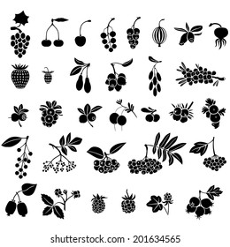 Silhouette black-and-white image of berries set