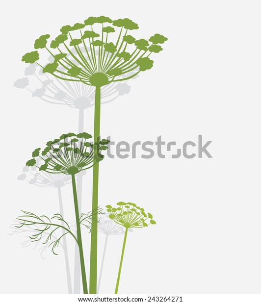 silhouette-blooming-fennel-vector-600w-2