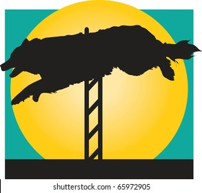 Silhouette of a Border Collie jumping a hurdle in an agility competition
