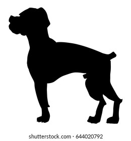 silhouette of boxer dog
