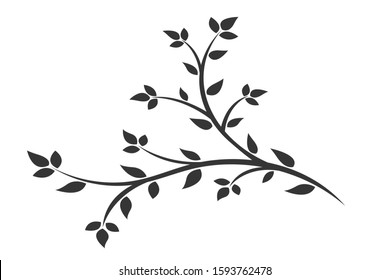 Silhouette of a branch with leaves. Young flowering tree. Sapling.