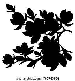 silhouette branch magnolia flowes blossom  vector illustration
