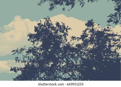 Silhouette Of Branches And Leaf Rowan-tree On A Background Of Clouds And Sky. Detailed Vector Illustration