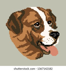 The silhouette of a brown dog breed St. Bernard is a muzzle, the head is drawn in the form of squares, pixels. An image of a brown St. Bernard breed portrait. Vector illustration