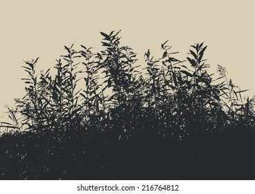 silhouette of a bush. vector illustration