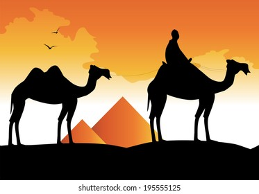 silhouette of camels and pyramids on the background