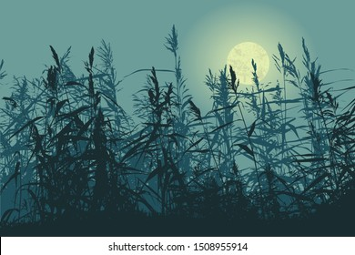 Silhouette of the cane and full moon. vector illustration