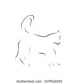 Silhouette of cat, hand-drawn illustration. Vector