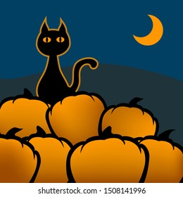 Silhouette of a cat sitting on a pumpkin field int the night. The cat has an orange glow. In the background is a half moon.