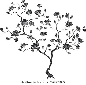 silhouette of a cherry branch. Vector illustration of a tree.