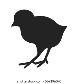 Silhouette of chicken isolated on white. Vector illustration of little bird, birdie icon