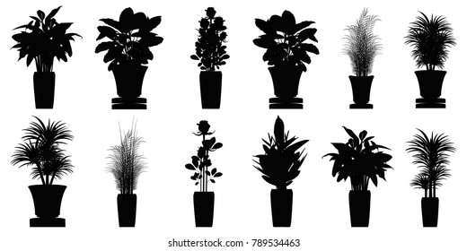 Silhouette collection beautiful ornamental plants for the garden and home , Green foliage in pots , Isolated tree vector.