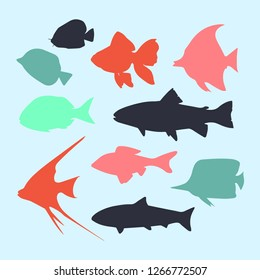 silhouette of colorful fish isolated on blue background