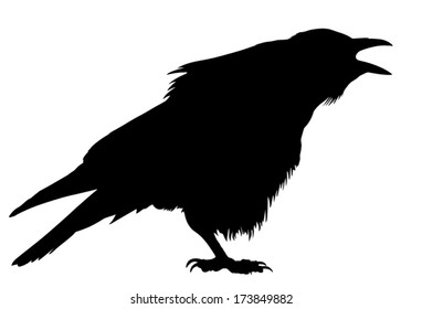 Crow Silhouette Images Stock Photos Vectors Shutterstock Flock of birds crows, raven, crow tree silhouette vinyl wall decal sticker. https www shutterstock com image vector silhouette crow cawing 173849882