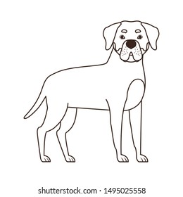silhouette of cute rottweiler dog on white background